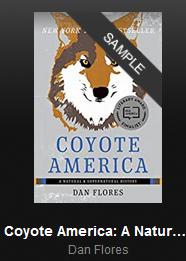 damnedoldcoyotes